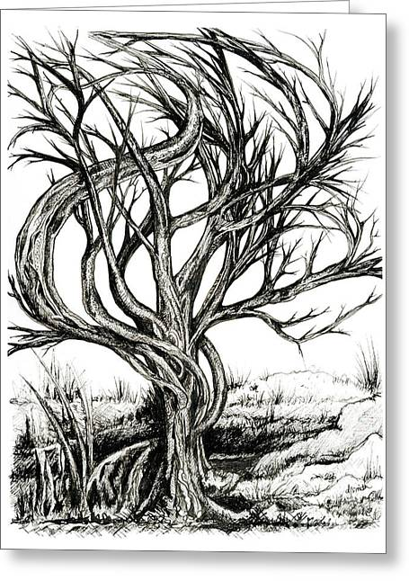 Twisted Tree Greeting Card by Danielle Scott