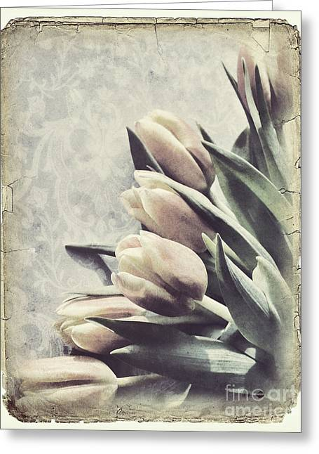 Tulips Greeting Card by HD Connelly