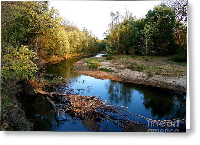 Twisted Creek Greeting Card