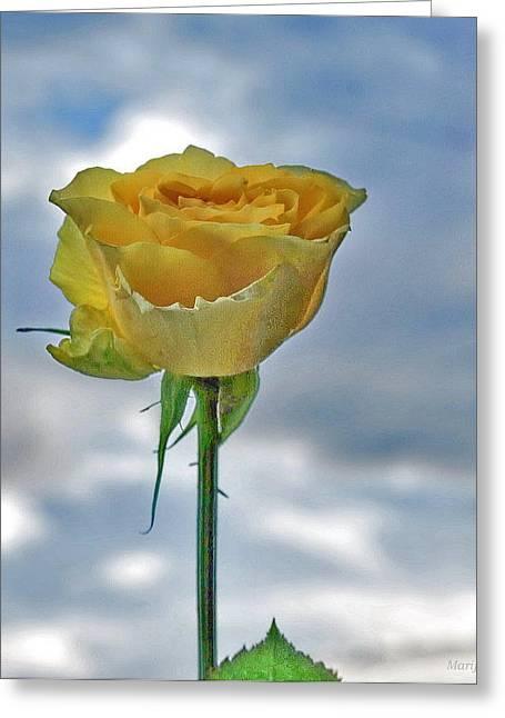 Greeting Card featuring the photograph U R My Sky... by Marija Djedovic