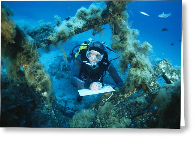 Underwater Biological Research Greeting Card by Alexis Rosenfeld