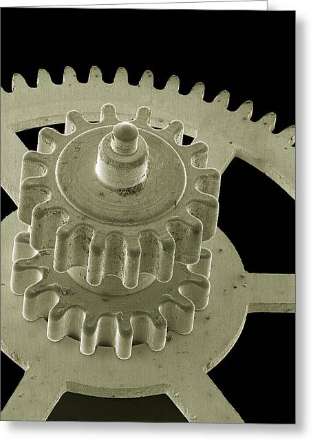 Watch Gears, Sem Greeting Card by Steve Gschmeissner