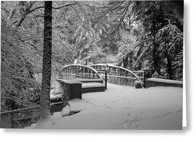 Watkins Glen Gorge Bridge In Winter 2 Greeting Card