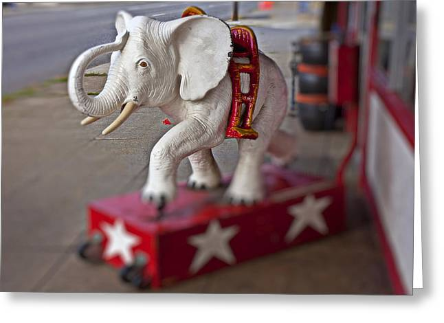 White Elephant Greeting Card by Garry Gay