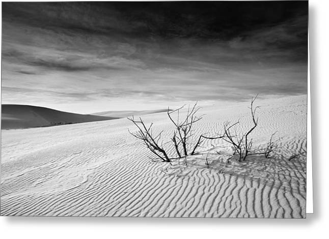 Greeting Card featuring the photograph White Sands by Mike Irwin