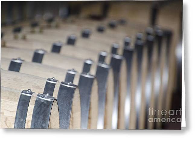 Wine Barrels In Line Greeting Card by Mats Silvan