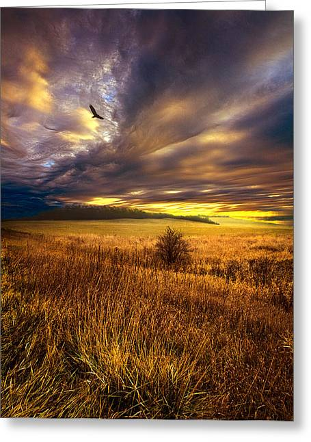 Wings And Prayers Greeting Card by Phil Koch