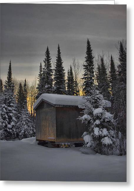 Winter Solitude Greeting Card by Heather  Rivet