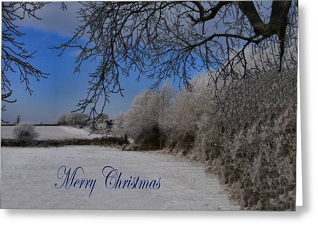 Winter Wonderland Greeting Card by Debra Collins