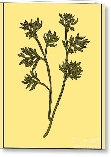 Wormwood, Alchemy Plant Greeting Card