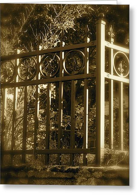 Greeting Card featuring the photograph Wrought Iron Fence by Robin Regan