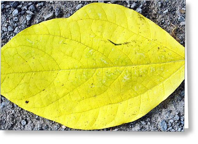 Yellow Leaf Greeting Card