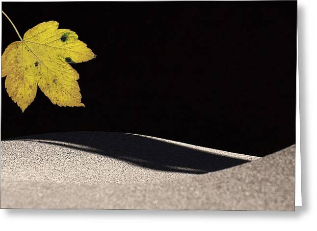 Yellow Leaf Greeting Card by Michael Mogensen