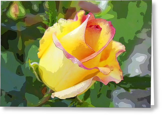 Greeting Card featuring the photograph Yellow Rose by Anne Mott