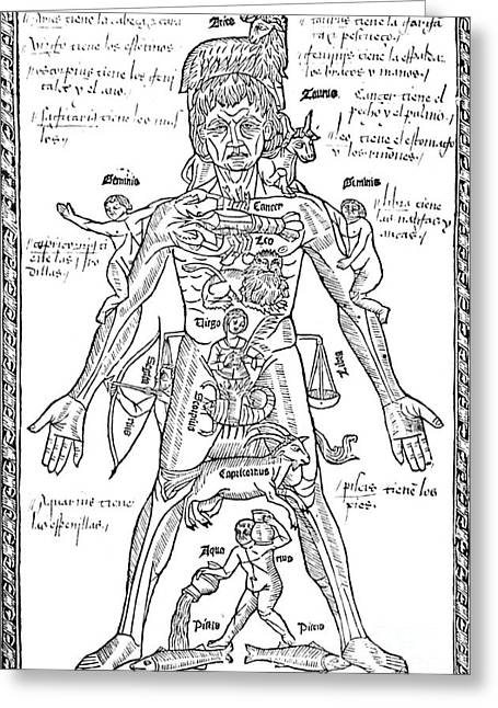 Zodiac Man, Medical Astrology Greeting Card by Science Source