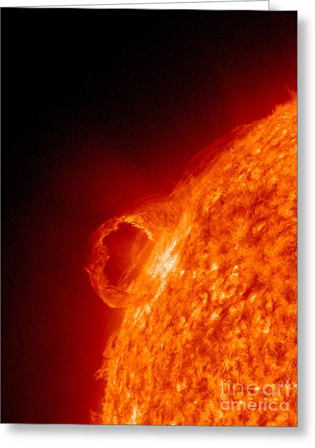 Solar Prominence Greeting Card by Science Source