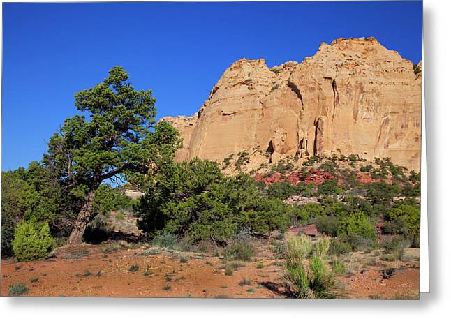 San Rafael Swell Greeting Card by Southern Utah  Photography