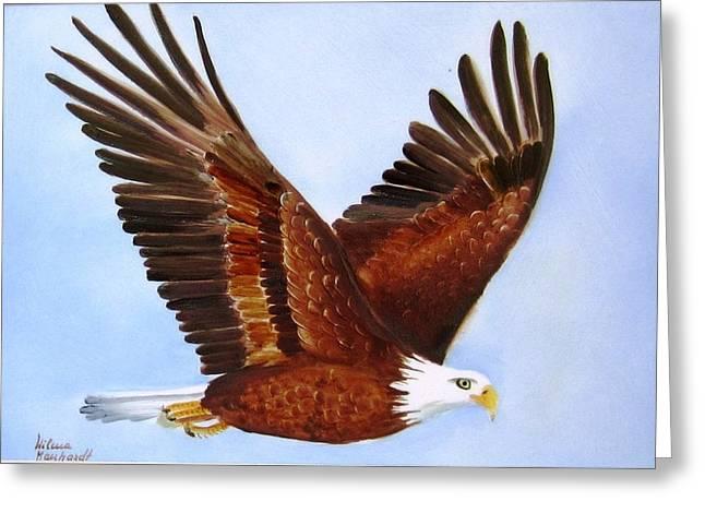 1149b  Bold Eagle 3 Greeting Card