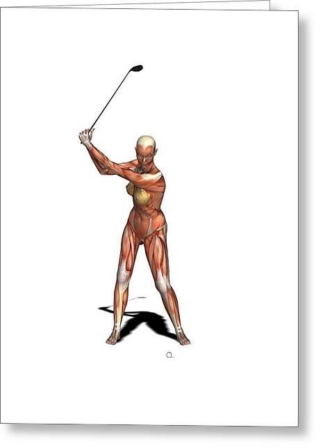 Female Muscles, Artwork Greeting Card by Friedrich Saurer