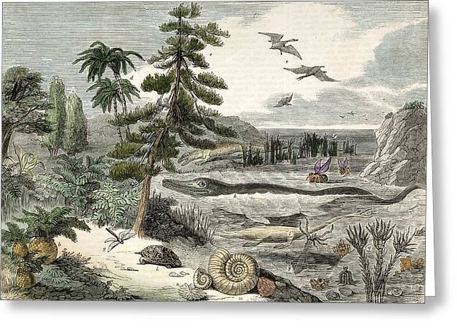 1833 Penny Magazine Extinct Animals Crop Greeting Card by Paul D Stewart