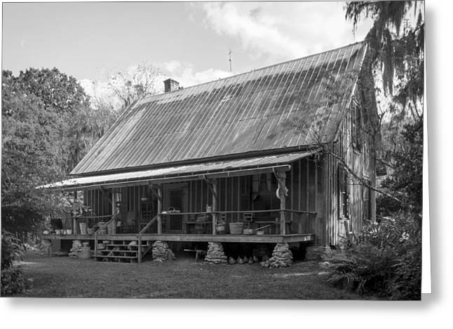1850's Florida Cracker Farmhouse Greeting Card by Lynn Palmer