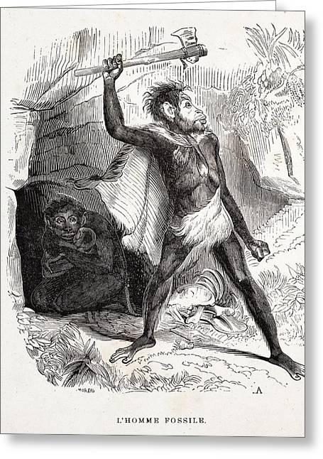 1861 Fossil Man By Boitard Greeting Card by Paul D Stewart