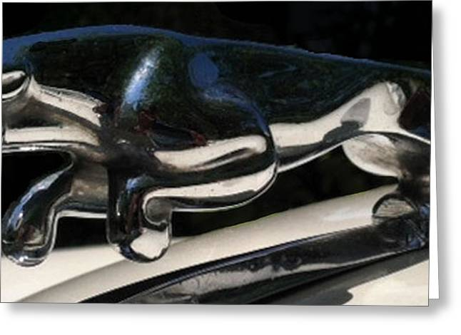 Greeting Card featuring the photograph 1959 Jaguar Hood Ornament by Elizabeth Coats