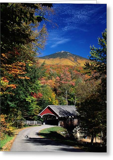 A Covered Bridge Greeting Card by Richard Nowitz