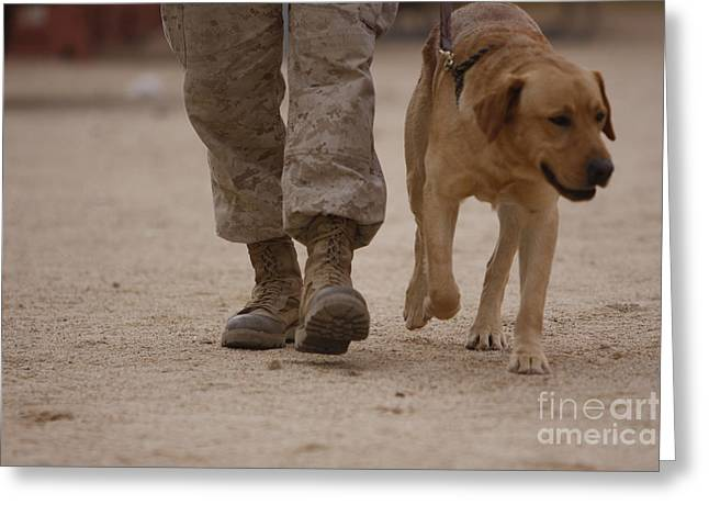A Military Working Dog And His Handler Greeting Card