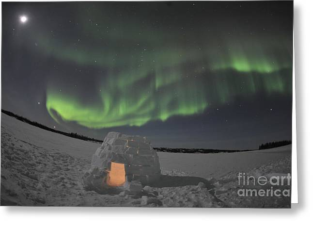 Aurora Borealis Over An Igloo On Walsh Greeting Card