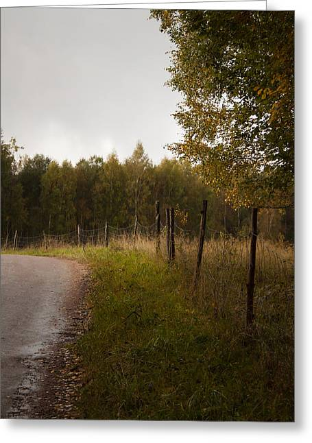 Autumn Greeting Card by Robert Hellstrom