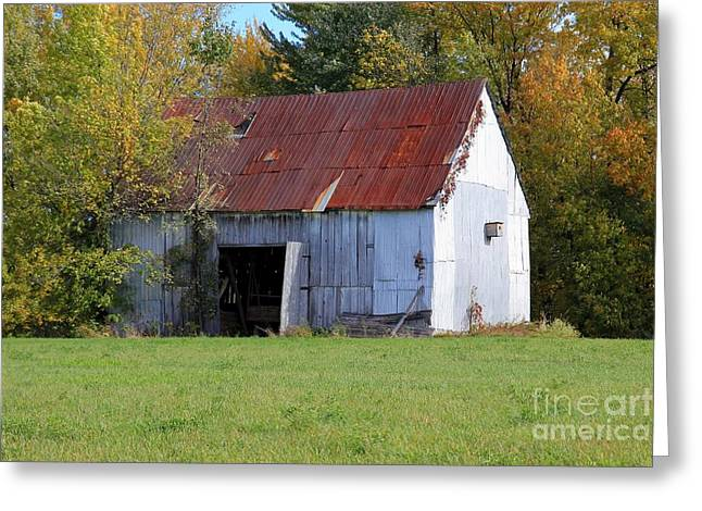 Barn Greeting Card by Sophie Vigneault