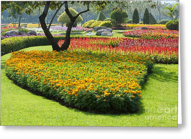 Beautiful Flowers In Park Greeting Card by Atiketta Sangasaeng