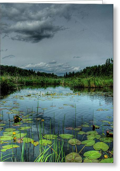 Bottomless Lake Greeting Card by Heather  Rivet