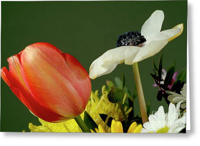 Bouquet Of Flowers Greeting Card by Sami Sarkis