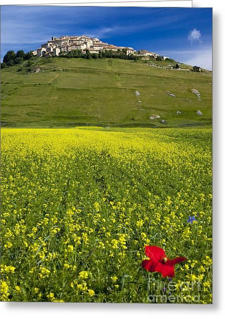 Castelluccio Umbria Greeting Card by Brian Jannsen