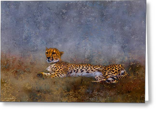 Cheetah Greeting Card by Ron Jones