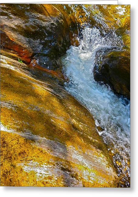 Childs Brook Close Up Greeting Card by George Ramos