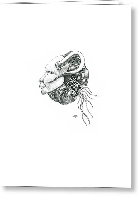 Creepy Curiosity IIi Greeting Card by Jeff Gould