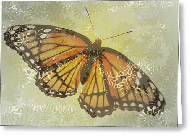 Designer Butterfly Collection Greeting Card by Debra     Vatalaro
