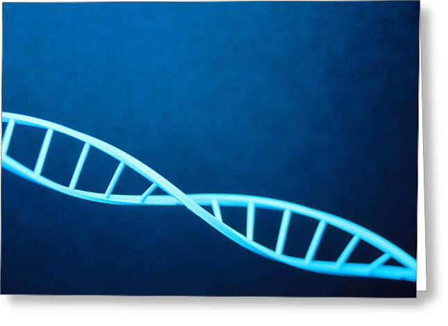 Dna Helix Greeting Card by Lawrence Lawry