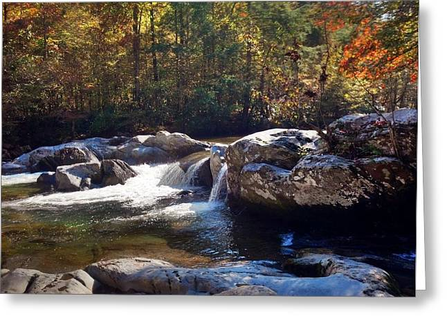 Greeting Card featuring the photograph Great Smoky Mountains by Janice Spivey