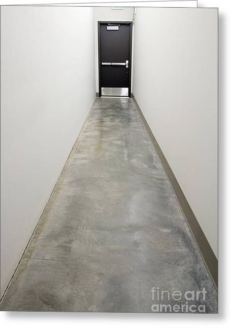 Hallway Greeting Card by Andersen Ross