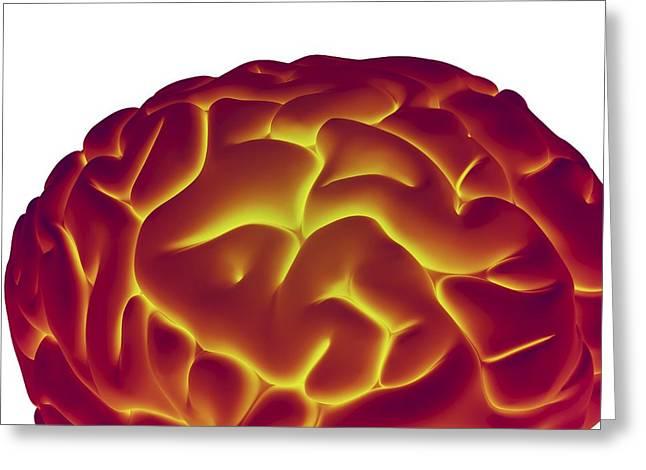 Human Brain, Artwork Greeting Card