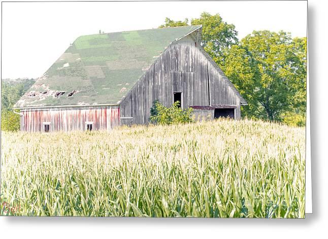 Kansas Country Greeting Card
