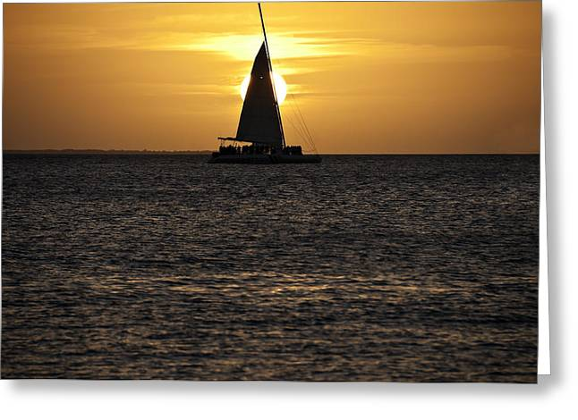 Key West Sunset Greeting Card by Paul Plaine