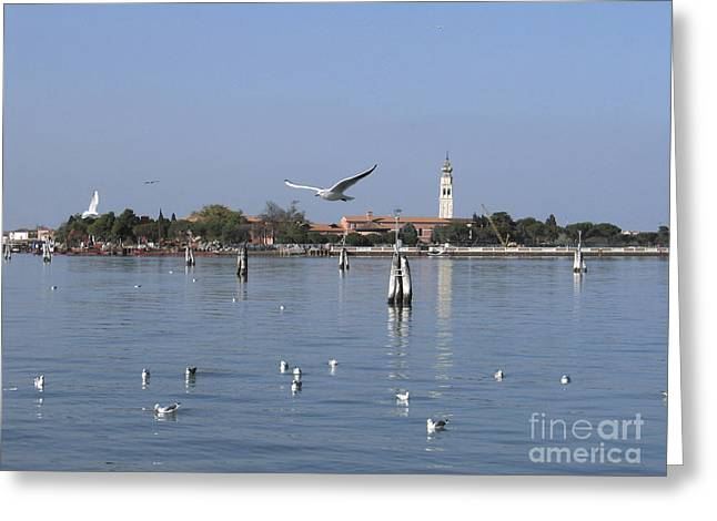 Lagoon. Venice Greeting Card by Bernard Jaubert