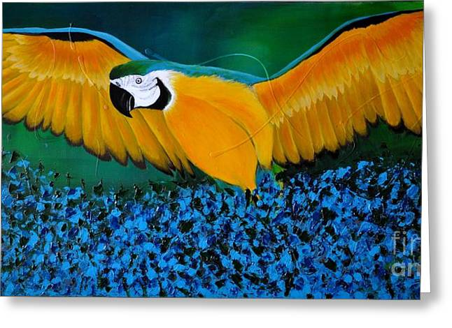 Macaw On The Rise Greeting Card