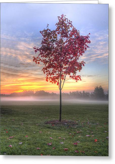 Morning Landscape Greeting Card