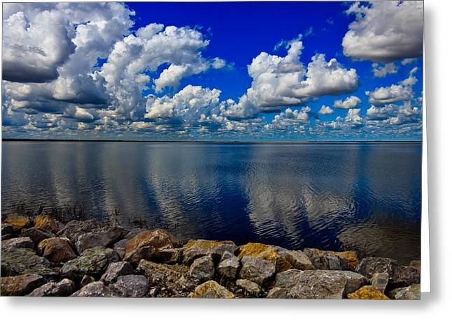 Mother Natures Beauty Greeting Card by Doug Long